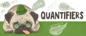 Quantifiers: some & any, much & many